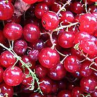 Berries by Ana Belaj