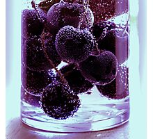 Berry Purple Photographic Print