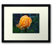The strength of happiness Framed Print