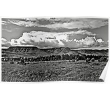 A landscape in B/W ! Poster