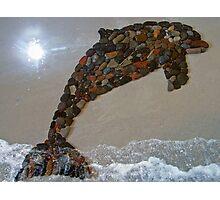 """Dolphin Delight"" Photographic Print"