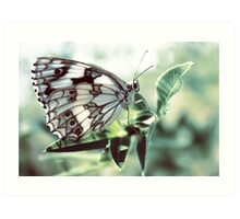 Butterfly in the grass Art Print