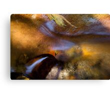 The colors of summer cool... Canvas Print