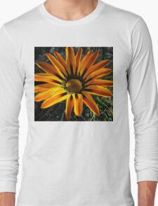 Gazania 11 Long Sleeve T-Shirt