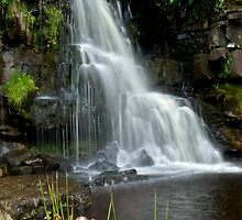 East Gill Force Near Keld #4 by Phil-Edwards