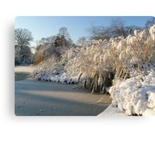 Icy  Lake and Snow in Greenwich Park Canvas Print
