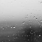 Rain - Lake District, UK by NikonNoob