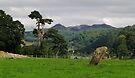 Megalith by WatscapePhoto