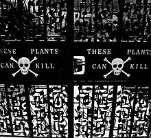 Poison Garden by TotoPhotos