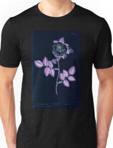 A curious herbal Elisabeth Blackwell John Norse Samuel Harding 1737 0190 The White Rose Inverted Unisex T-Shirt
