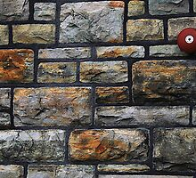 Red Alarm and Stone by Joanne  Bradley