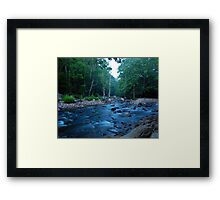 Williams River Framed Print