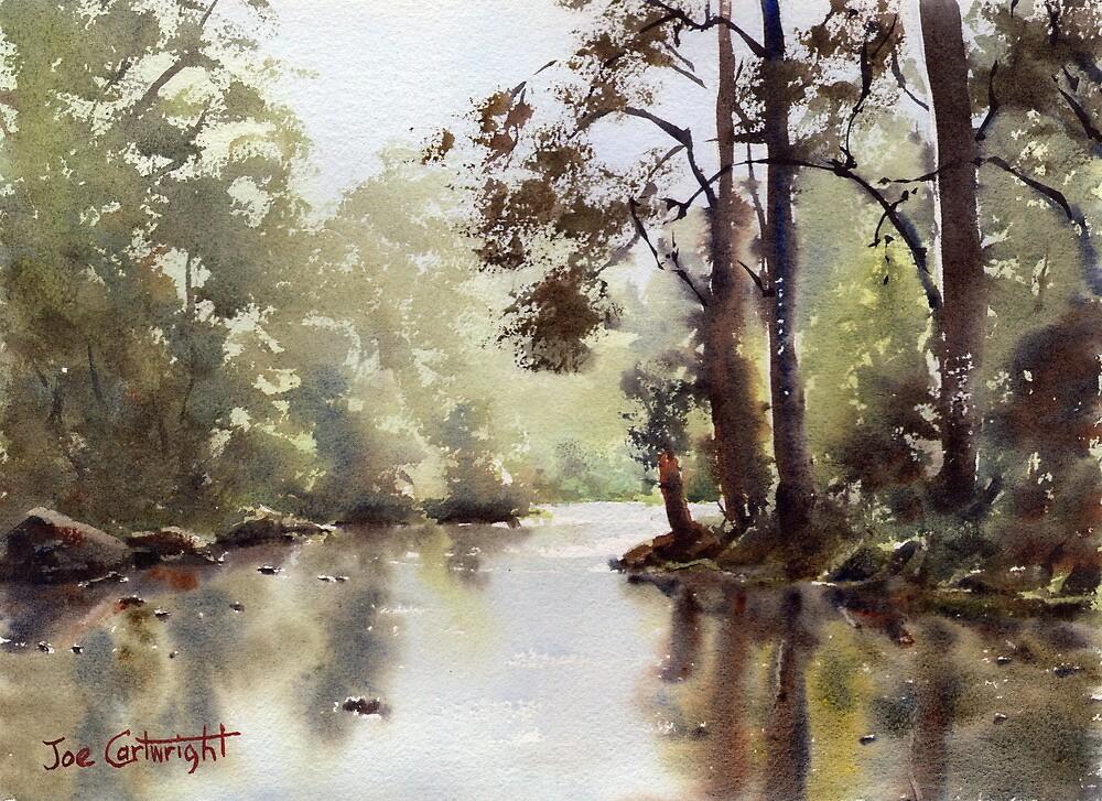 Nepean River Penrith by Joe Cartwright
