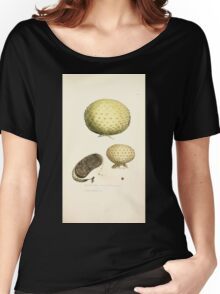 Coloured figures of English fungi or mushrooms James Sowerby 1809 0759 Women's Relaxed Fit T-Shirt