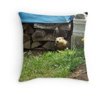 How Much Wood Can This Woodchuck Chuck? Throw Pillow