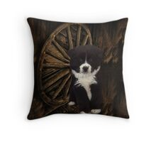 IF U COULD READ MY MIND..WHAT A TALE MY THOUGHTS WOULD TELL..ESKIMO SPRINGER SPANIEL CANINE PILLOW AND OR TOTE BAG ECT. Throw Pillow