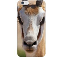 Springbok I iPhone Case/Skin