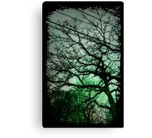 Trees & Wires Canvas Print