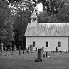 Church in the Wildwood by Lisa G. Putman