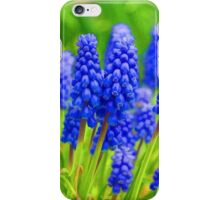 Muscari - Impressions Of Spring iPhone Case/Skin