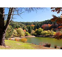Autumn by the lake Photographic Print