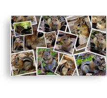 CHIPPY'S BUSY SCRAPBOOKING BABY PICTURES Canvas Print