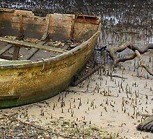Low Tide !! by Trish Threlfall
