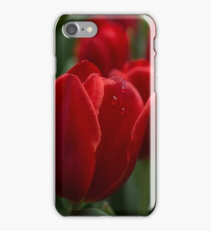 Vibrant Red Spring Tulips iPhone Case/Skin