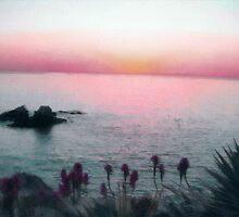 Misty Sunset by Joni  Rae