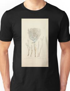 Coloured figures of English fungi or mushrooms James Sowerby 1809 0779 Unisex T-Shirt