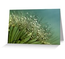 Dew Speckled Fountains  Greeting Card