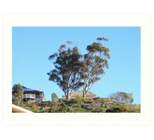 When skies are blue in Mannum they are really BLUE!! Art Print