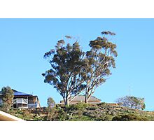 When skies are blue in Mannum they are really BLUE!! Photographic Print