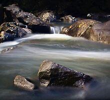 Cascade by Elaine Short