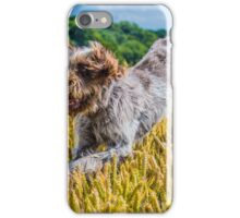 Spinone - Full Tilt iPhone Case/Skin