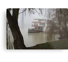 Marion in the fog... Metal Print