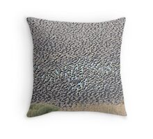 Yay!! The water is slowly coming back. Throw Pillow