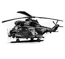 Puma Helicopter Photographic Print