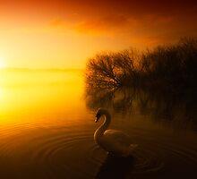 On Golden Loch by Samantha  Nicol