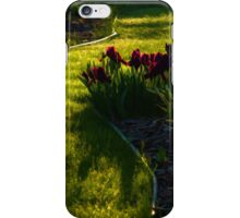 Green Garden Path - Impressions Of Spring iPhone Case/Skin