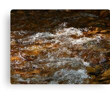 Swift River Rush Canvas Print