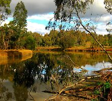 River Heritage & Wetlands Reserve by Chris Chalk