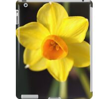 Yellows of Jonquils iPad Case/Skin