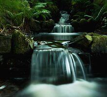 Forrest Falls  by Samantha  Nicol