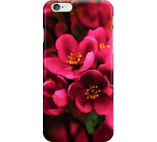 Dark Spring Dreams iPhone Case/Skin