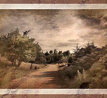 Memories Fade - Vintage by Danuta Antas