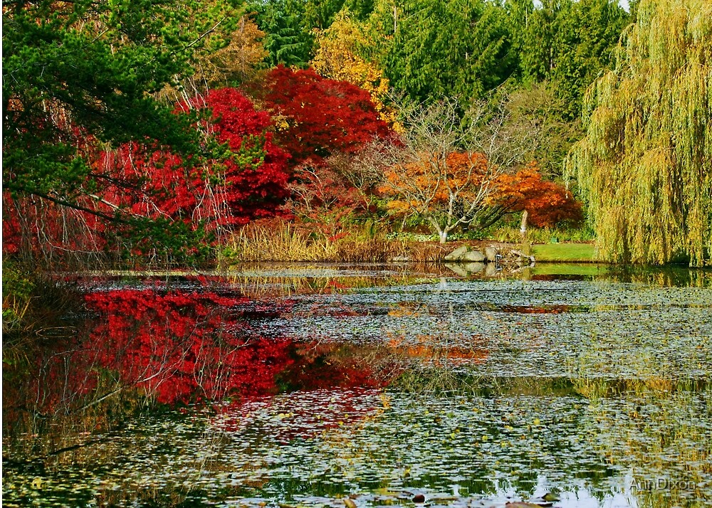 Here comes the Fall by AnnDixon