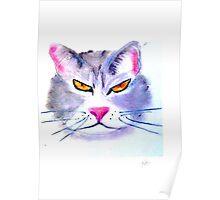 Caffeine Cat Poster