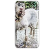 Spinone - Do I have to get out? iPhone Case/Skin