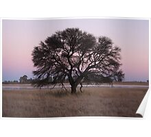 Mitzpah Farm, Free State I Poster